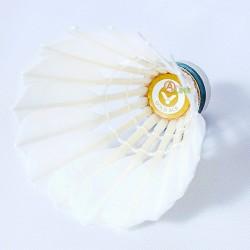 【VICTOR】勝利B-17 GOLD ACE金黃專業級羽毛球(16年新球)